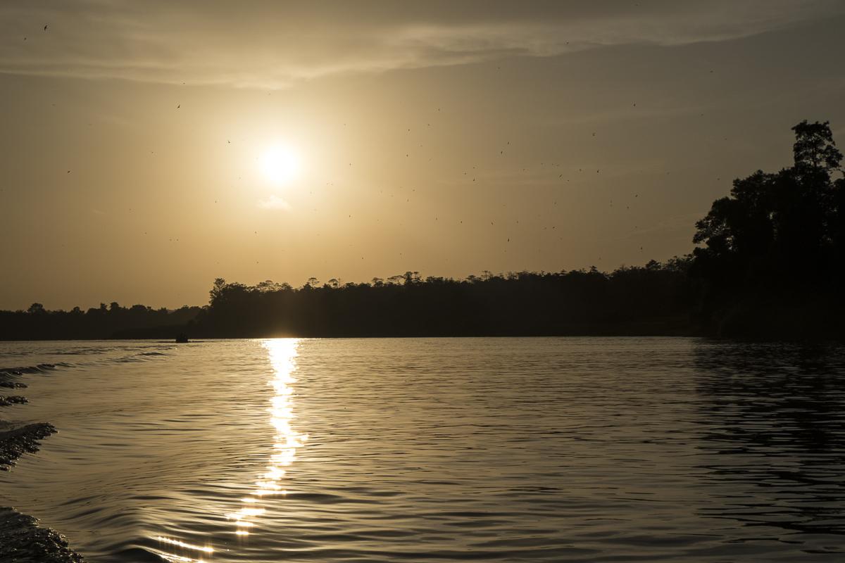 Kinabatangan Sunset