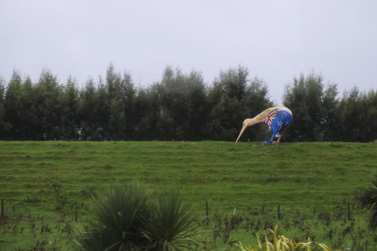 Hobbiton Giant Kiwi