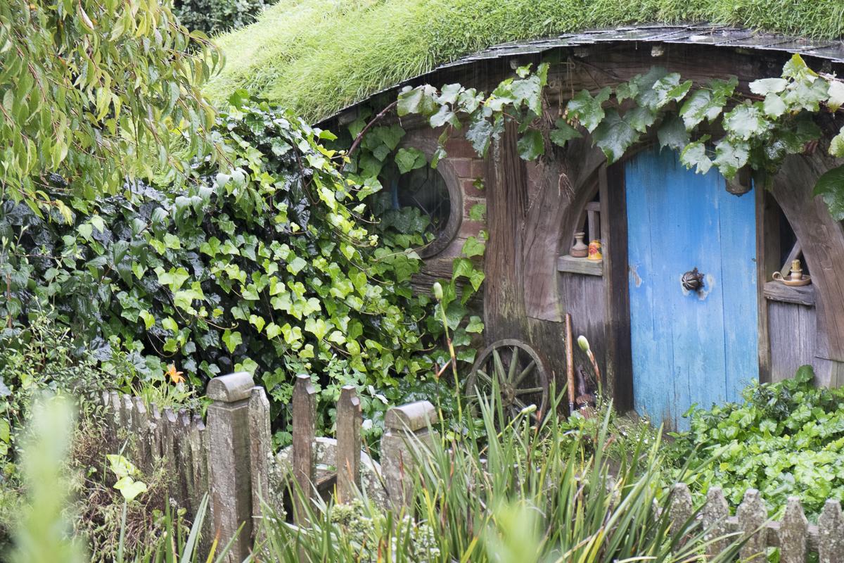 Hobbiton Tour Hobbit Hole