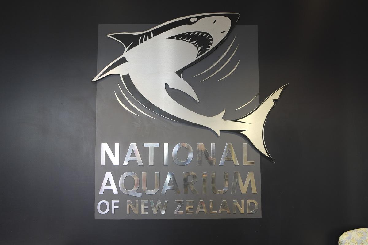Napier Aquarium New Zealand-6